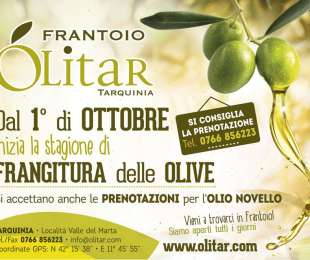 Pressing of olives starting from October 1